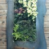 Custom Living Wall frame by Grant Keller